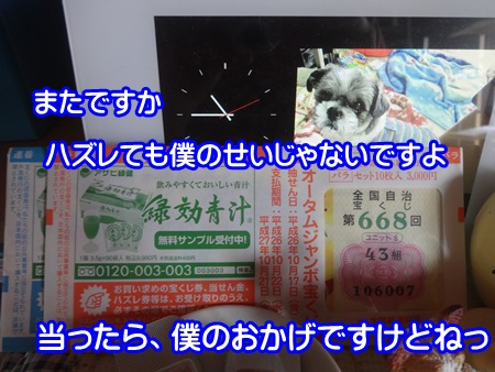 0924-04_20140924190037bca.jpg