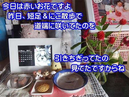 0924-05_20140924190038e0a.jpg