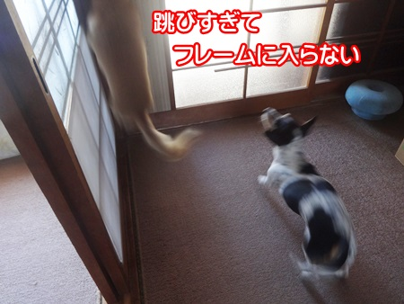 0927-01_20140927214536ace.jpg