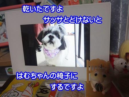 1014-02_20141014191936a13.jpg