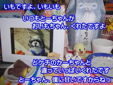 1015-04_20141015153237b7a.jpg