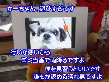 1022-03_2014102215070684c.jpg