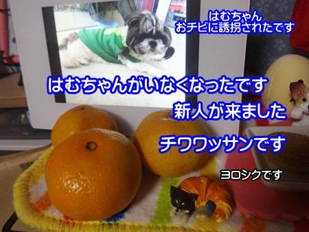 1025-03_20141025202830ee6.jpg