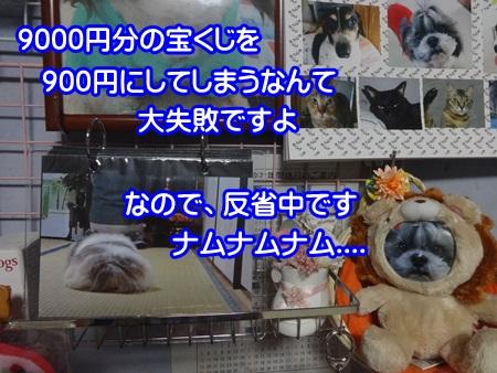 1026-03_201410262023108b2.jpg