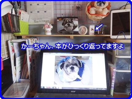 1029-04_20141029193007eda.jpg