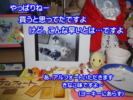 1116-04_20141116195555e71.jpg