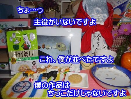 1119-05_20141119202625acf.jpg