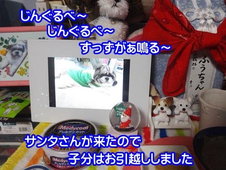 1124-03_20141124200123be7.jpg