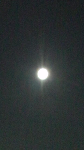 〝Blue Moon〟