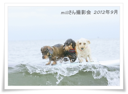 milisan_201209_6