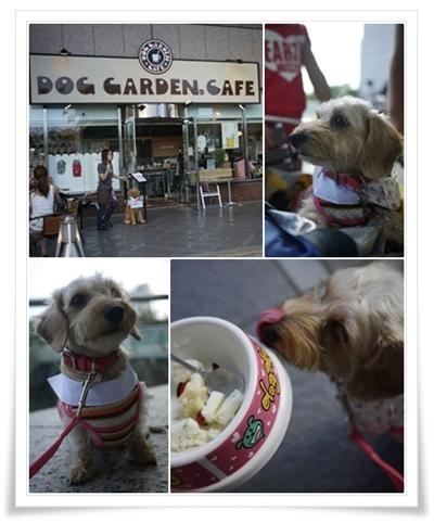 Dog_garden_cafe_201209