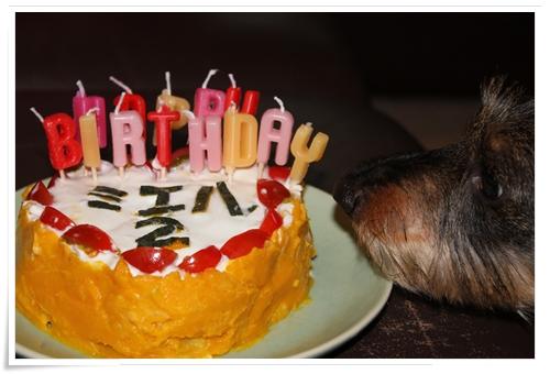 Miel_Birthday_cake2012