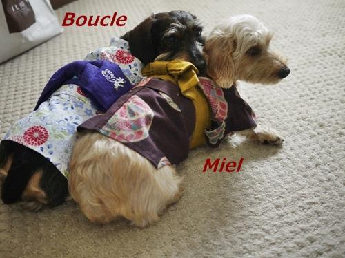 Boucle_20120831