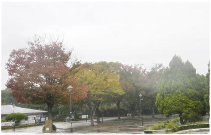 hikarigaoka_park_201210