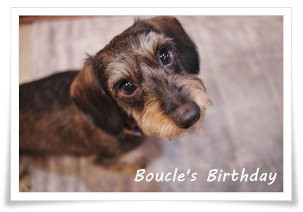 boucle_birthday_smile20121020