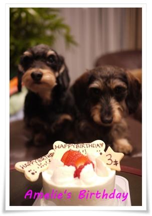 Amelies_cake_20121115