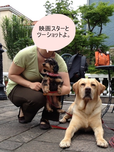 amelie_masao