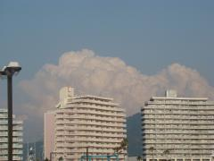 my pictures 20120528 018