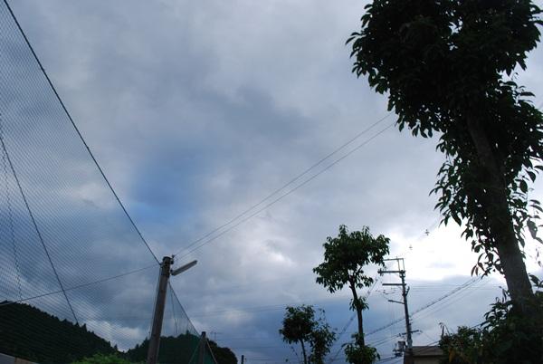 2012 07 07 02