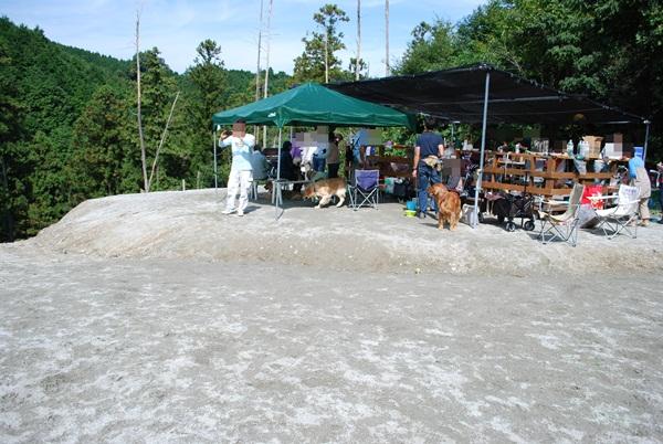 2012 10 08 (3)