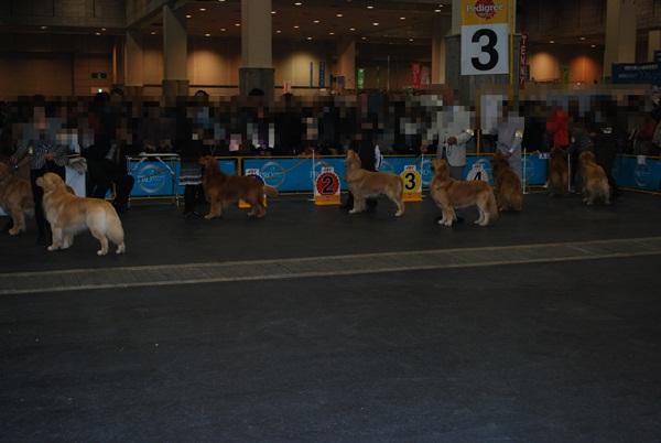 2012 12 02 (1)