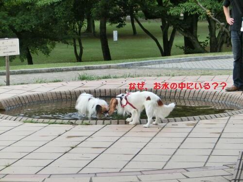 0810-07_20120810113446.jpg