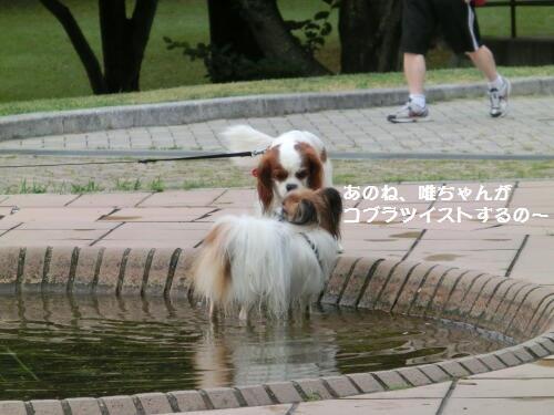 0810-09_20120810113446.jpg