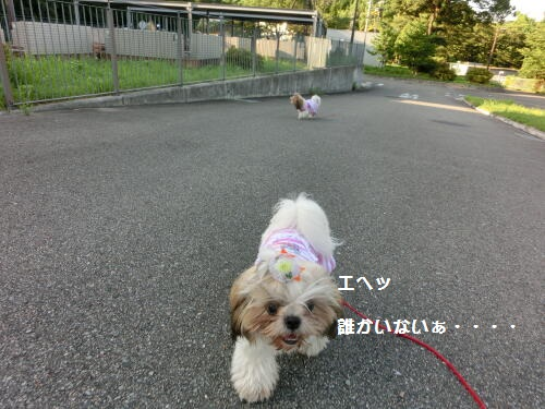 0810-10_20120810113244.jpg