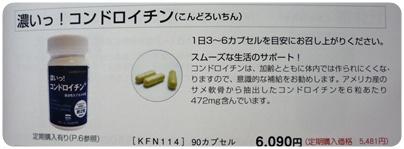 P1040498.jpg