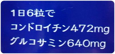 P1040500.jpg