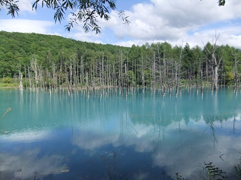 *青い空と白い雲が映った青い池*