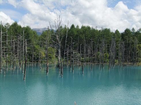 *美しい池だね~*