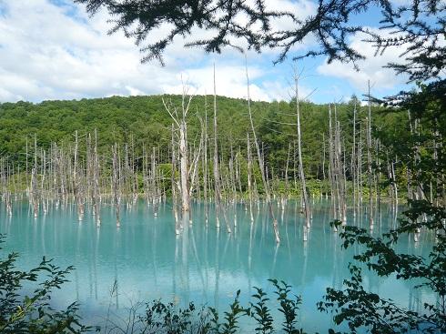 *青い池*