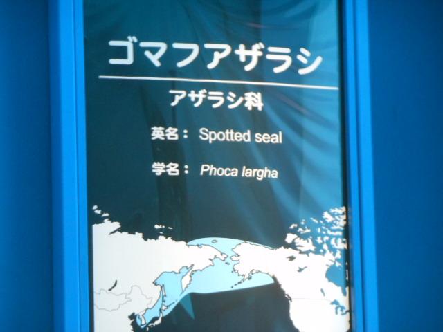 名古屋港 072