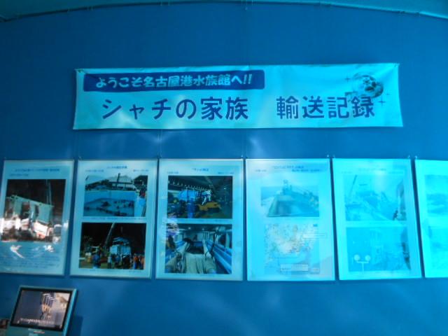 名古屋港 065