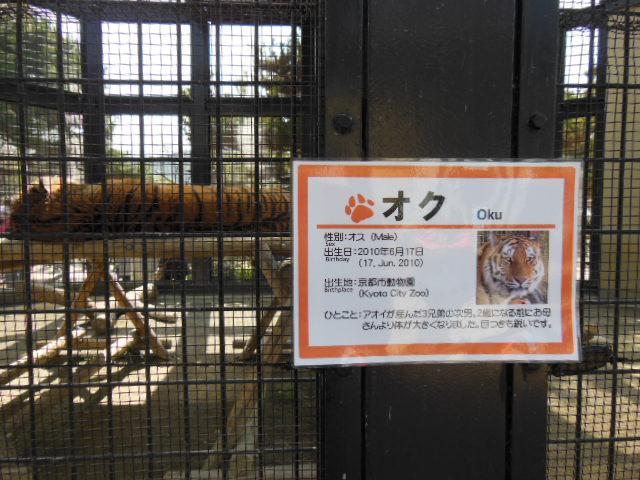 京都 024