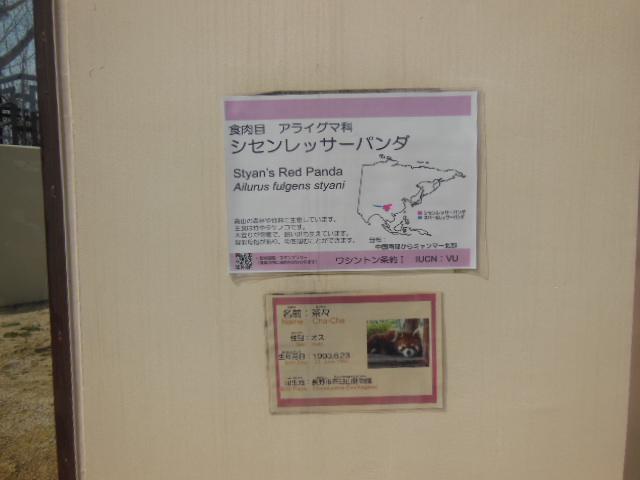 京都 109
