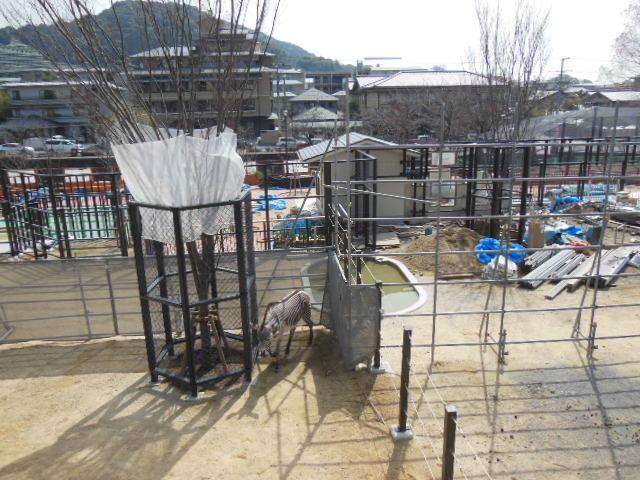 京都 130