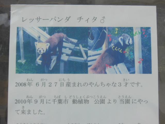 浜松 095