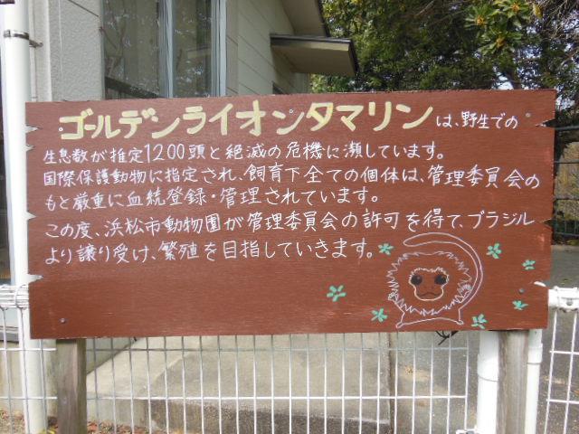 浜松 076