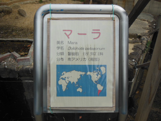 浜松 119