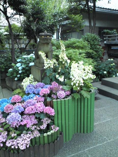 hakusan4_wb.jpg