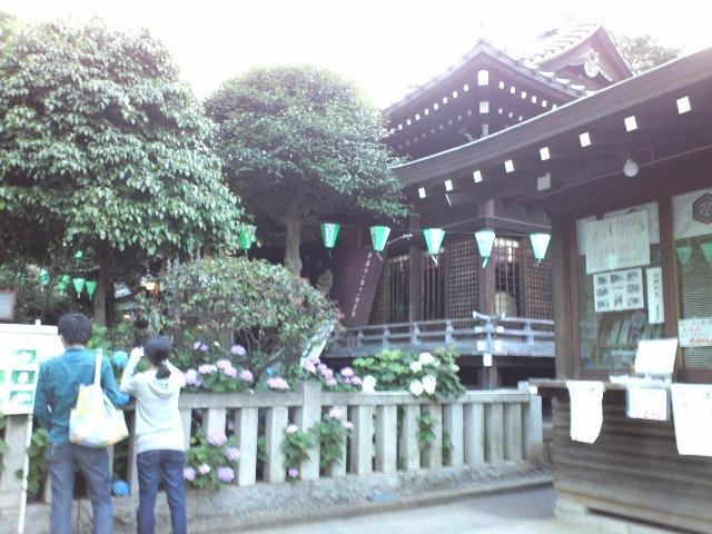 hakusan9_wb.jpg