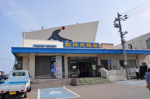 加茂水族館 クラゲ 日本一 鶴岡市