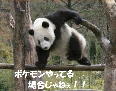 20130121141822bd9.jpg