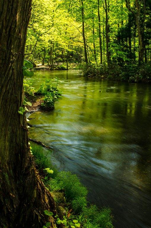 20120517-石ヶ戸の瀬