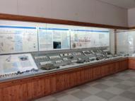 化石の分類展示