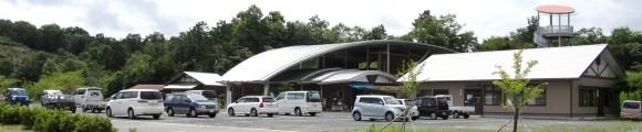なぎビカリアミュージアム(化石博物館)