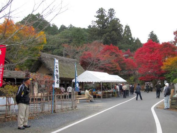 桜と紅葉祭り