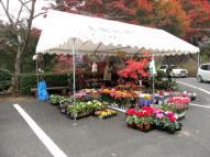 花の販売テント